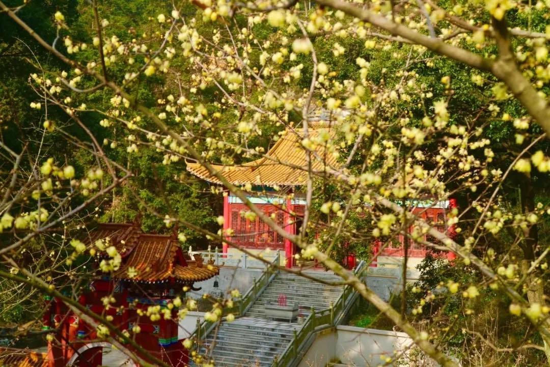 梅岭 太阳谷景区-网红打卡地